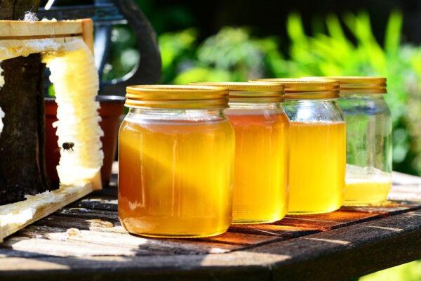 Пчеловодство - идея сельского бизнеса